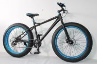 Big Tire Snow Bicycle