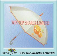 Auto Promotion Poe Umbrella with Lemon Logo