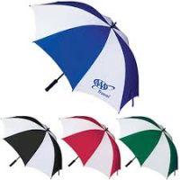 19.5 inch Ladies Mini Umbrella