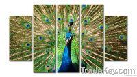 peacock animal canvas print