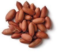 High Quality Raw Peanut