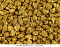 Gold Nuggets & Dust