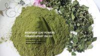 Dried Moringa leaf power
