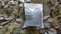 Graviola Leaf Tea/ Soursop Leaf