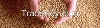 Soybean Meal Alfafa Hay Corn Gluten Meal Wheat Bran Rice Bran Fish Mea