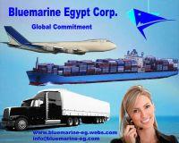 Logistics Service Agent