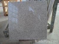G355 white jade granite tils