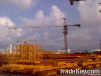 58m boom tower crane/6t tower crane