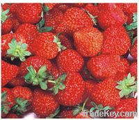 Strawberry series