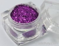 Glitter Powder (TS304)