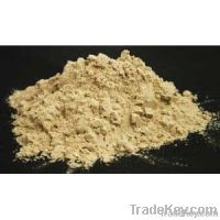 Organic and pure Whey Protein powder
