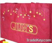 PP non woven bag/shopping bag