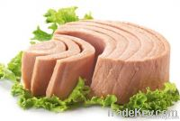 Canned Tuna Chunks Solids