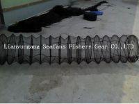 scallop farming cage