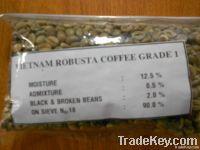 Export Robusta Coffee
