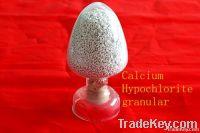 calcium hypochlorite granular