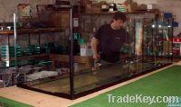 aquariums, terarium,