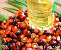 Palm Oil, palm oil supplier, palm oil exporter, palm oil manufacturer, palm oil trader, palm oil buyer, palm oil importers