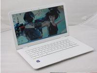 Win7,13.3?? Screen 1366 * 768 WiFi Laptop,Atom D525 Dual-Core 1.8g+2GB DDR3+250g HD,Bluetooth,DVD-ROM