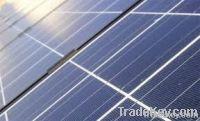 solar panel for sale in bulk quanitity
