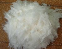 Viscose staple fiber (functional)
