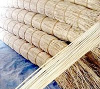 Rattan material raw core in Vietnam cheaper China and Malaysia