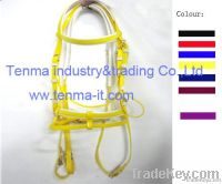 horse bridle and reins