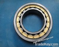 NSK Single Row Cylindrical Roller Bearing