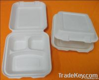biodegradble food container/box