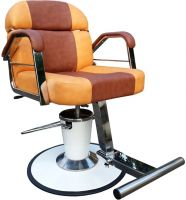 Salon Chair : Type3808 (Enamel Base) (Taiwan R&D)