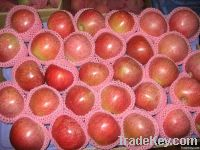 unbagged qinguan apple
