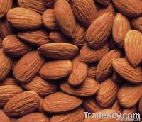 Sweet Almond & Dry Fruit