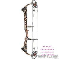 Bow / Archery Set