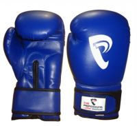 Boxing Gloves | Boxing Equipment