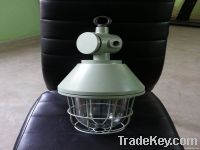 FLAMEPROOF LIGHTING FIXTURES