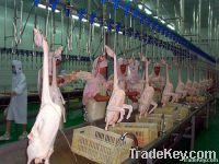 Equipment of poultry slaughtering and cutting