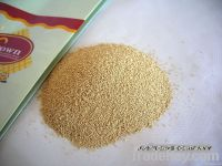 Best buy dried yeast