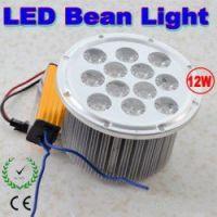 LED Bean Light 12W Downlights Ceiling Lighting