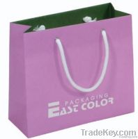2012 Fashion gift paper shopping bag