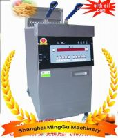 Electric Deep Fryer, Potato Chips fryer(CE&ISO approval)