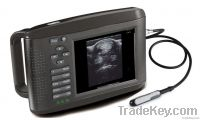 portable hand-held veterinary ultrasound scanner