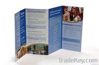 Cheap Folded Flyer Leaflet Brochure Printing