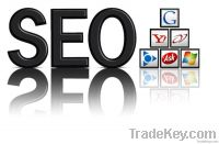best service for Seo Service