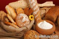 Baking Food Raw Materials