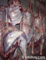 Fresh And Frozen Meat