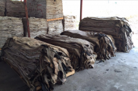 WET SALTED COW HIDES / WET SALTED SHEEP SKIN / WET SALTED PIG SKIN