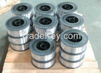 Top quality NiAl 95/5 alloy wire/Thermal Spray wires