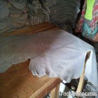 Wet Blue Split | Cow Hides | Animal Skins