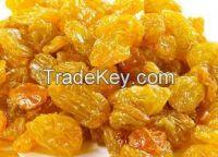 Golden Raisins for sale
