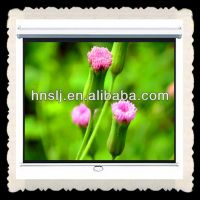 Cheapest manual projection screen